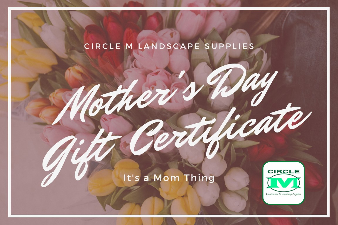 Mothers Day Gift Certificates, available through Sunday